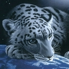 Аватар для webtula